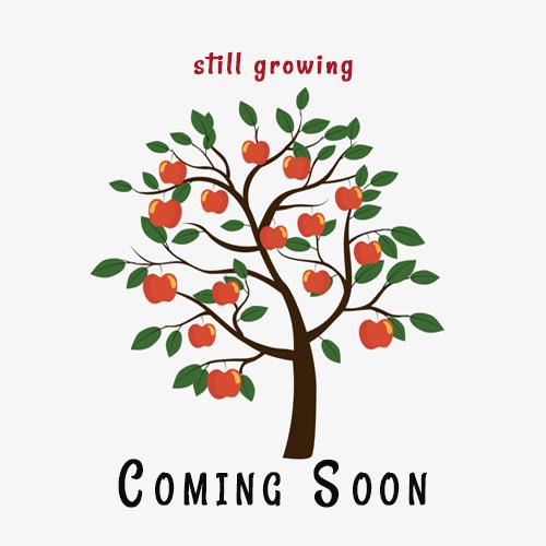Spirit Valley Strawberry Jam-20oz