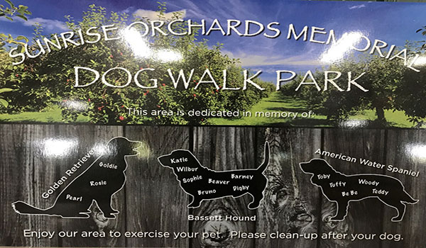 Sunrise Orchards - Dog Walk Area