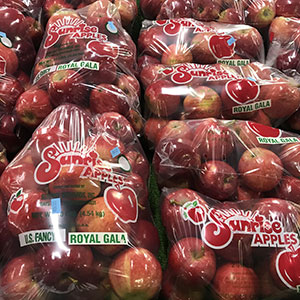 Gala Apples available at Sunrise Orchards!