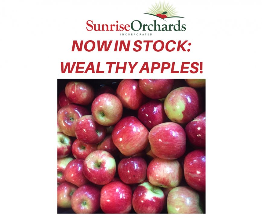Wealthy Apples in Stock!